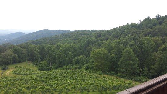 Stone Mountain Vineyards照片