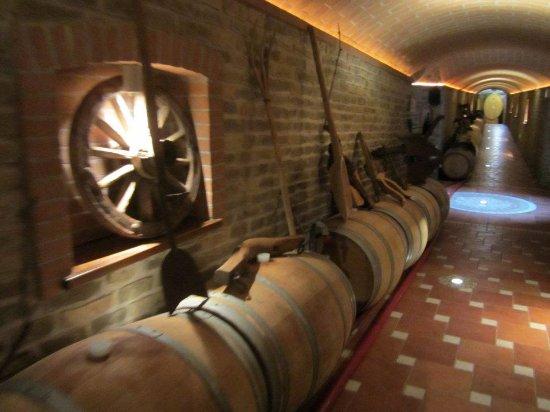Moasca, Italia: Weinkeller in der Region