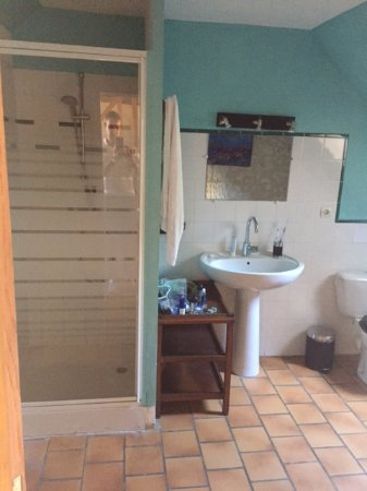 Auberge de Crissay: Bathroom was very clean with a standing shower.