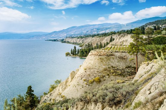 Penticton, Canada: Bench 1775 View