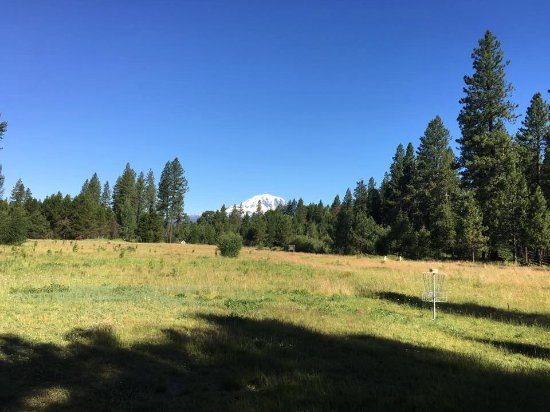 Glenwood, WA: Mt. Adams from the meadow at Mt. Adams Lodge