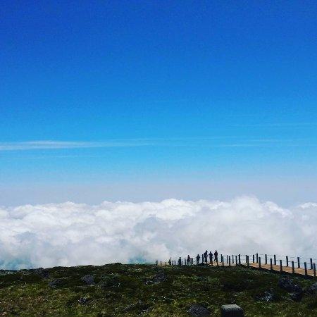 Hallasan National Park: 한라산 정상에서 등산로를 바라보며 찍은 사진입니다.