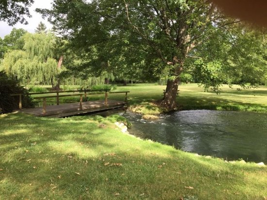 Farrell House Lodge: Stream