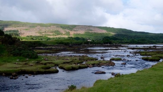 Dervaig, UK: There's a little bridge over the burn