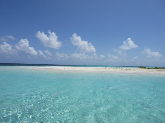 Ellaidhoo Maldives by Cinnamon: Island hopping