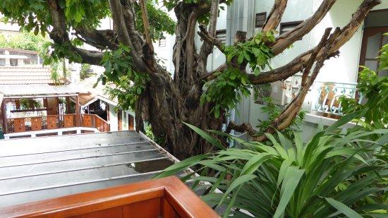 Sri Pat Guest House: Vue du balcon
