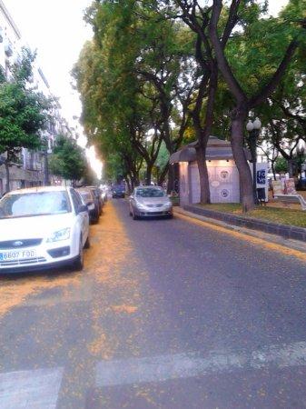San Juan de la Rambla, Espagne : Flower buds light up the Ramblas streets