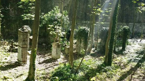 Domaine de la Chartreuse