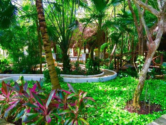 Amarte Hotel: photo4.jpg
