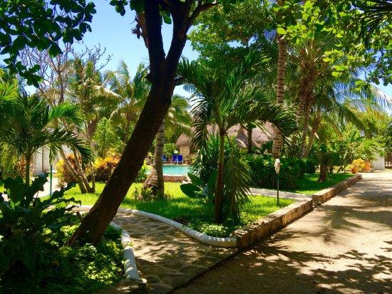 Amarte Hotel: photo6.jpg