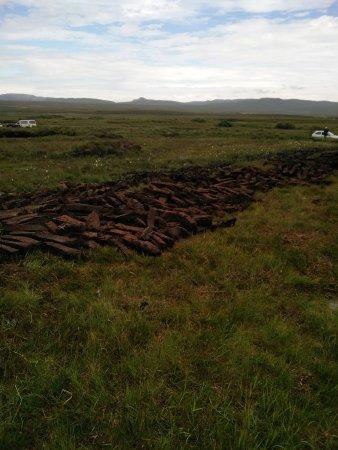 Порт-Эллен, UK: Peat field