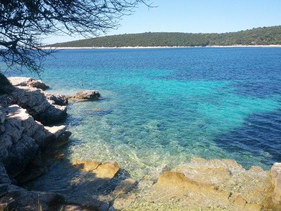 Lošinj Island, كرواتيا: artatore
