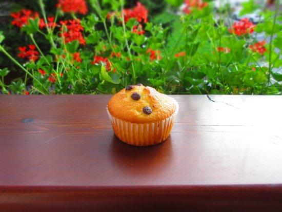 Garni Astrid : Muffin appena sfornato da Tania e gustato ancora caldo di ritorno da una lunga passeggiata