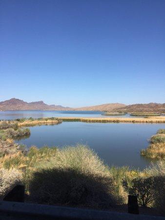 Lake Havasu City, AZ: photo4.jpg