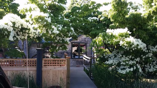 Beacon Room: Entry, dogwoods in bloom, fence at left encloses outdoor dining area.
