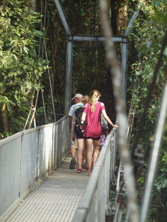Daintree Region, Australia: The suspension bridge