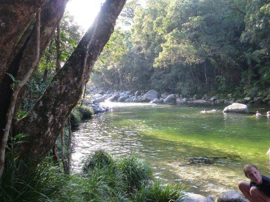 Daintree Region, Australia: Ready for a dip
