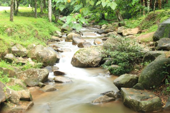 Khun Korn Waterfall : A small stream by the parking lot