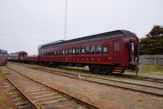 Skunk train car