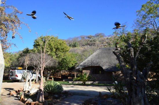 Outjo, Namibia: Cottage Number 1 on the left.