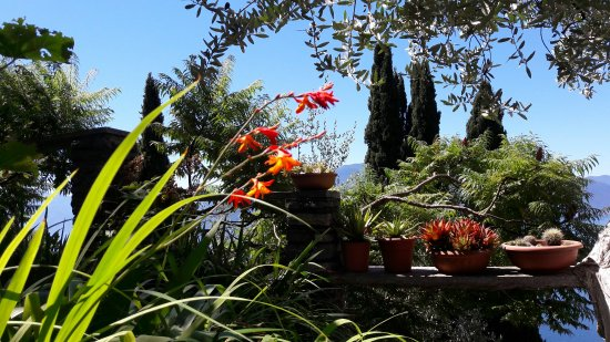 Perledo, Italia: 20160718_115839_large.jpg