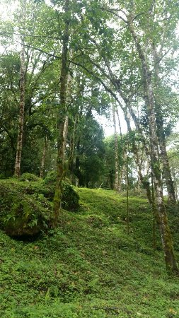 San Gerardo de Dota, Costa Rica: 20160717_095059_large.jpg