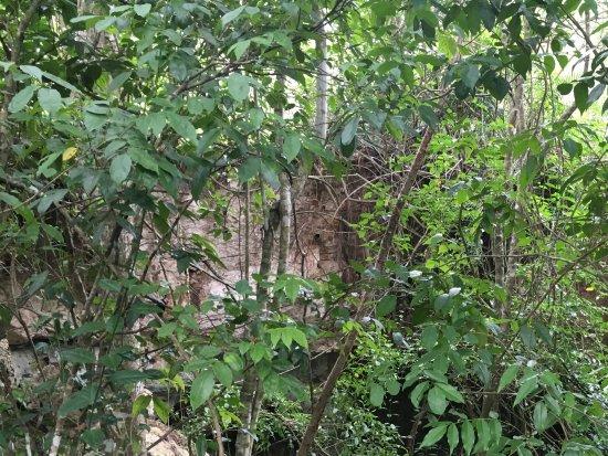 Bayahibe, Dominican Republic: Die Höhle