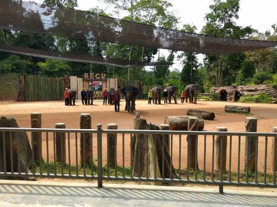 Kuala Berang, Malaysia: IMG_20160713_112152_large.jpg