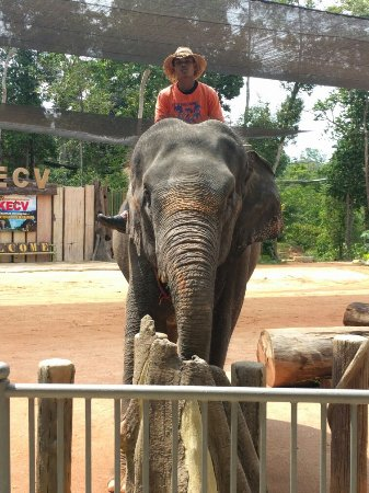 Kuala Berang, Malaysia: IMG_20160713_114021_large.jpg