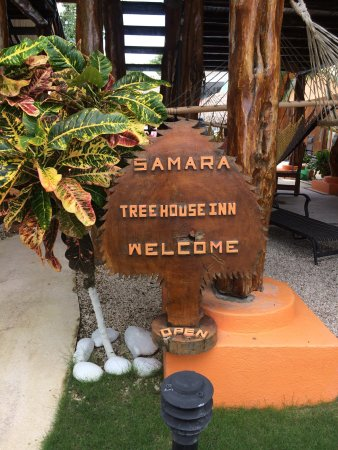 Samara Tree House Inn: photo1.jpg