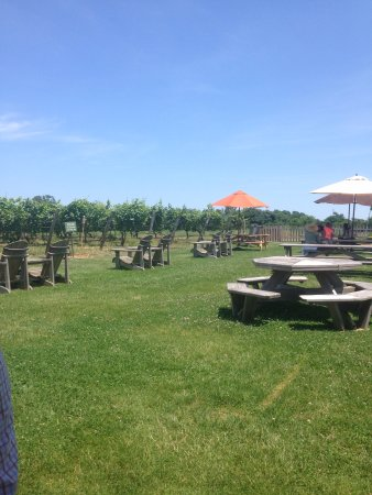 Aquebogue, NY: Palmer VIneyards