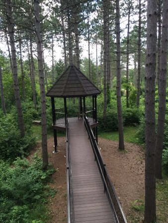 Wausau, WI: view from higher level of treehouse