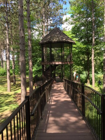 Wausau, WI: lower level view of treehouse