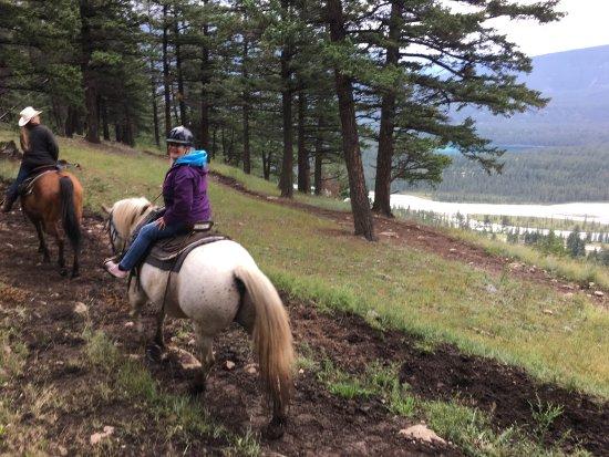 Jasper Riding Stables: photo0.jpg