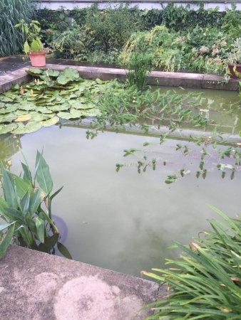 Chinese Scholar's Garden : photo2.jpg
