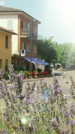 Castello di Serravalle, Italia: Trattoria Elisa