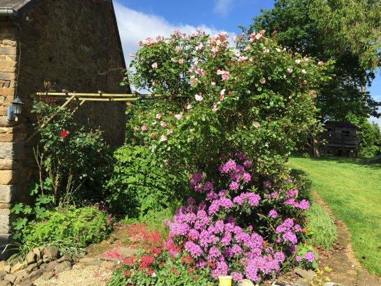 Les Fleurs de Villepretre : photo2.jpg