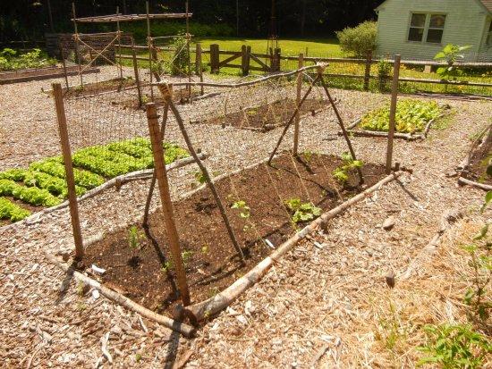 Media, PA: Garden plots