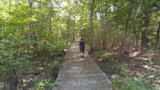 Woodbine, Nueva Jersey: 20160712_162511_HDR_large.jpg