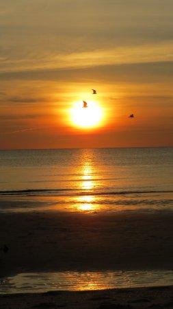 North Cape May, NJ : BEAUTIFUL SUNSETS FROM BALCONY