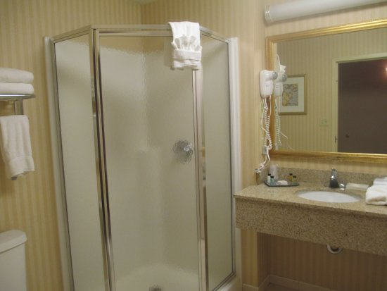 Fort William Henry Hotel And Conference Center: Bathroom Has Stand Up Shower  And Tub,