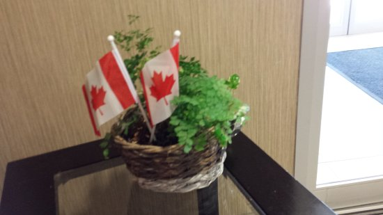 MainStay Suites Winnipeg: Canada Day Welcome in the lobby