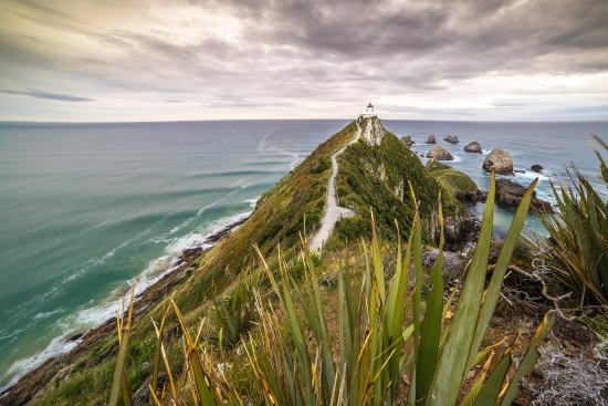 Invercargill, Nouvelle-Zélande : Nugget Point in the Catlins - Southern Scenic Route