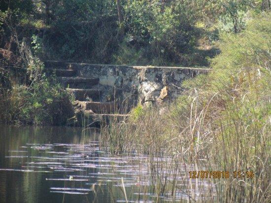 Haenertsburg, África do Sul: Honeymoon in the honeymoon cabin at Stanford Lake Lodge