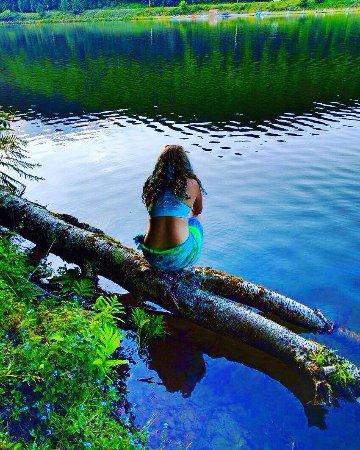 Galeton, Pensilvania: Lyman Run State Park