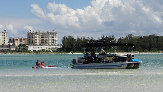 Osprey, FL: Floating on the paddleboard.