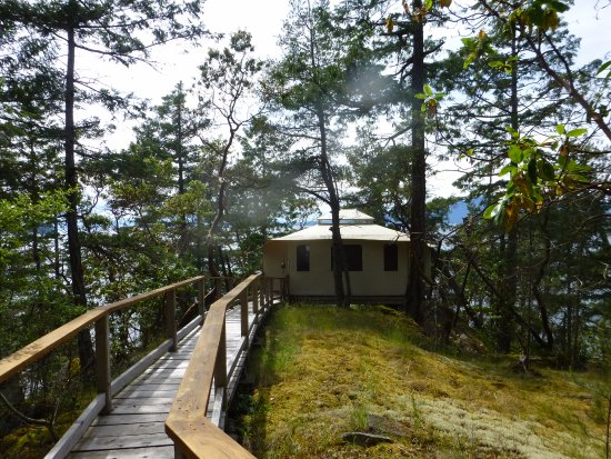 Halfmoon Bay, Canada: Boardwalk to our tenthouse