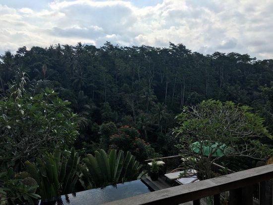 Tegalalang, Endonezya: photo3.jpg