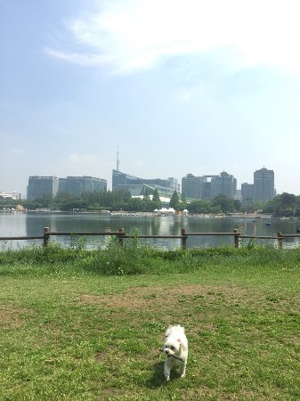 Goyang, Sydkorea: photo2.jpg