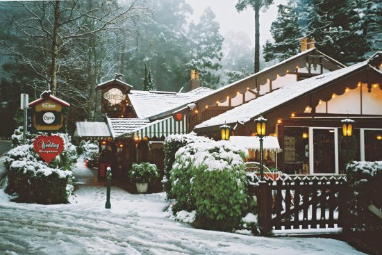 Cuckoo Restaurant: The Cuckoo with a dusting of snow